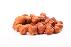 Peeled hazelnut on white. Background royalty free stock photography