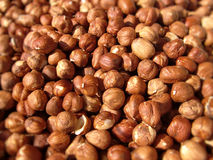 Peeled hazelnuts Royalty Free Stock Image