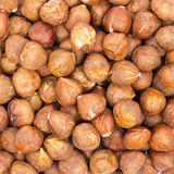 Peeled Hazelnuts Stock Photography