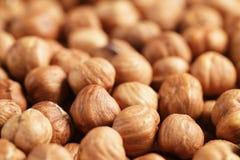 Peeled hazelnuts close up background Royalty Free Stock Images
