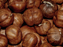 Peeled hazelnuts close-up Royalty Free Stock Photos