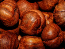 Peeled hazelnuts close-up Stock Photos