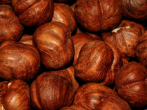 Peeled hazelnuts close-up Royalty Free Stock Photo