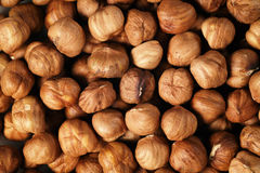 Peeled hazelnuts directly from above Stock Images