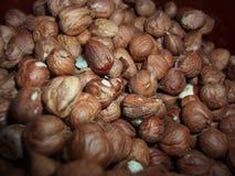Peeled hazelnuts. Macro background texture Stock Photography
