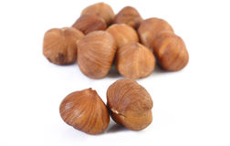 Peeled hazelnuts Stock Photos