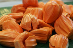 Peeled jackfruit Stock Images