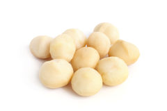 Peeled Macadamia nut. On a white background Stock Photography