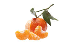 Peeled  Mandarine Orange Tangerine Stock Image