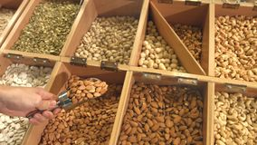 Peeled nuts and seeds in boxes.  Slow motion. Horizontal pan  from right to left. Smooth movement of the chamber along boxes with nuts and seeds: walnut stock footage