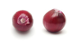 Peeled onion Stock Photography