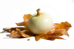 Peeled Onion. Sweet onion peeled sitting on brown skin  and isolated on white with clipping path Stock Images