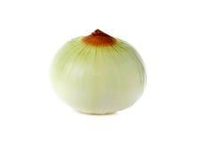 Peeled Onion on white Stock Image