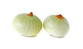 Peeled Onion on white background Stock Photo