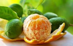 Peeled orange, and  lemons Royalty Free Stock Image
