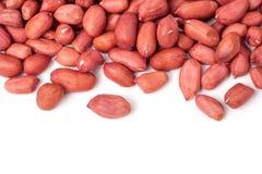 Peeled peanut isolated on a white background Stock Photos