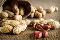 Peeled peanut on well peanuts Stock Image