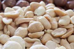 Peeled peanuts, close up Royalty Free Stock Images