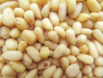 Peeled pine nuts background Royalty Free Stock Photos