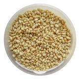 Peeled pine nuts in the plastic container Stock Image