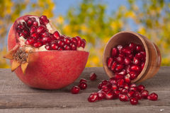 Peeled pomegranate and garnet grains in a bowl on wooden background Royalty Free Stock Photo