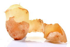 Peeled potato Royalty Free Stock Photo