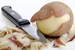 Peeled potato Royalty Free Stock Photos