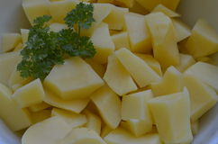 Peeled potatoes with parsley in white bowl Royalty Free Stock Image