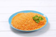 Peeled red lentils Stock Images