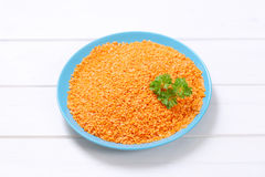 Peeled red lentils Stock Image