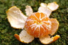 Peeled ripe orange Stock Photos
