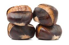 Peeled roasted chestnut Stock Image