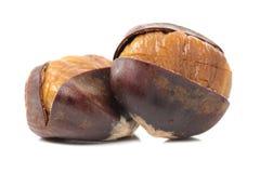 Peeled roasted chestnut Stock Photography