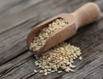 Peeled sesame seeds. In a scoopn won wooden surface Royalty Free Stock Images