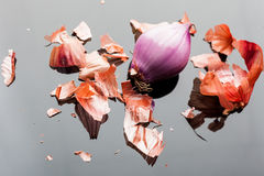 Peeled shallot onion from above Stock Photos