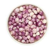 Peeled shallots Royalty Free Stock Image