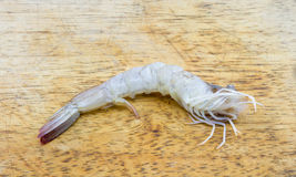Peeled shrimp on a splat, Background white. Peeled shrimp on a splat Background white Stock Photos
