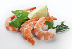 Peeled shrimps. Some peeled hot-water shrimps with basil, rosemary and lime royalty free stock photos