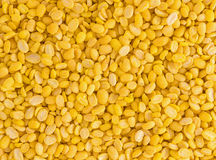 Peeled split mung bean isolated Royalty Free Stock Photography