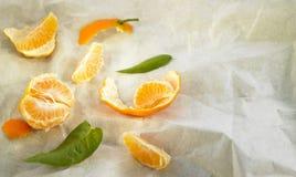 Peeled and split tangerine Stock Image