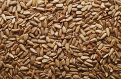 Peeled sunflower seeds background Stock Images