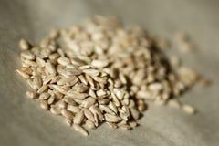 Peeled sunflower seeds stock photos