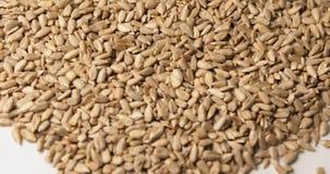 Peeled sunflower seeds close up rotation stock video footage