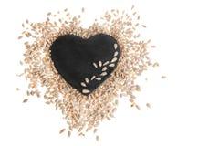 Peeled Sunflower Seeds Isolated on White Royalty Free Stock Photos