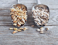 Peeled sunflower seeds. Stock Photography