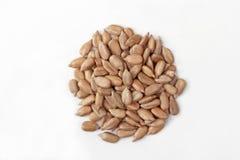 Peeled sunflower seeds on white background