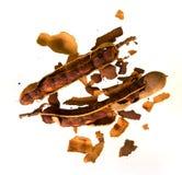 Peeled tamarind Stock Photos