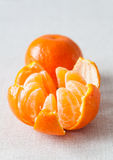 Peeled tangerine. Closeup of fresh peeled tangerine Stock Photography