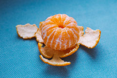 Peeled tangerine on blue background Stock Image