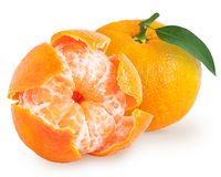 Peeled tangerine or mandarin fruit isolated. Peeled and unpeeled tangerine or mandarin fruit isolated on white background. Clipping path included stock photo
